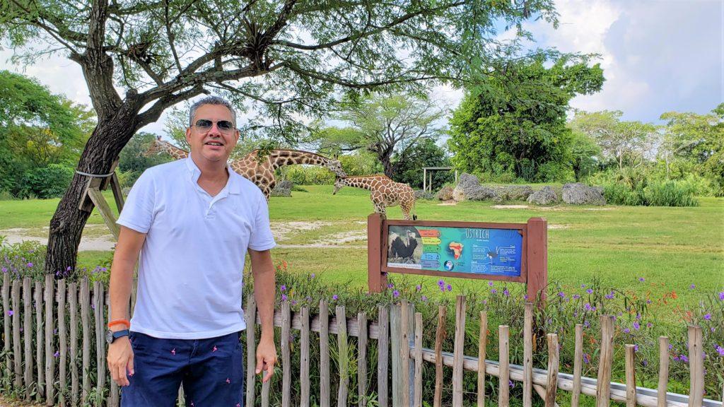 El Zoológico de Miami una atracción que no te puedes perder si estas de visita en Miami o vives en el sur de la Florida.